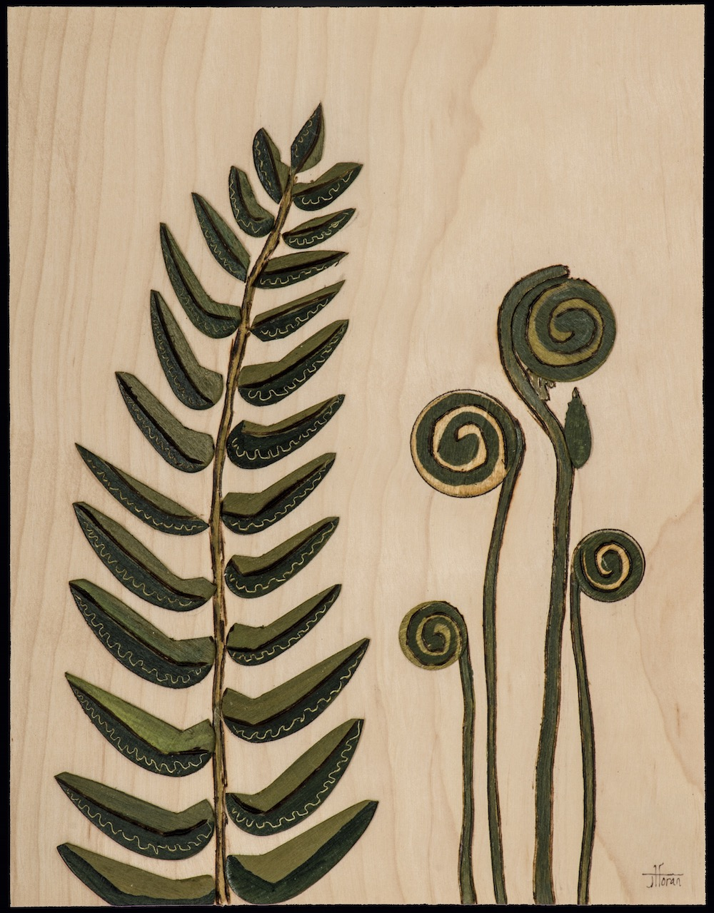 "Fern Family   Reproduction on Recycled Paper  8"" x 10""  http://www.artisticportland.com"