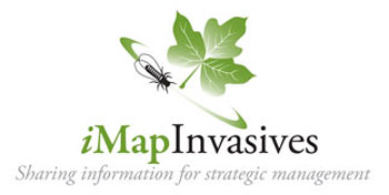 iMap_logo_large_crop.jpg