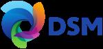 DSM+logo.png