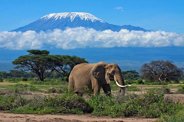 tanzania-mount-kilimanjaro.jpg