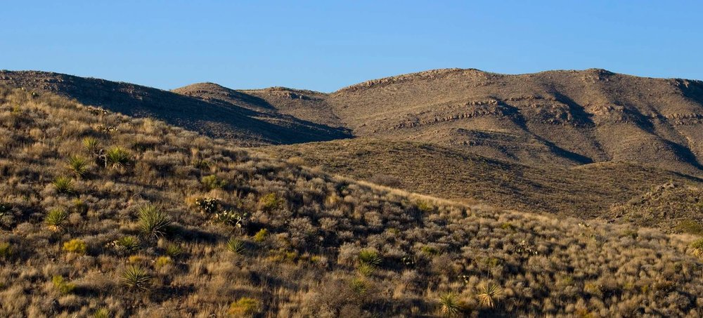 Screenshot of Needle_Peak,_Texas.jpeg (5215×970).jpg
