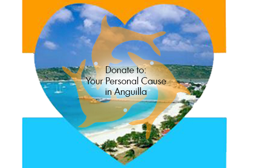 What Cause Is Close to Your Heart? Please Tell Us When You Donate.