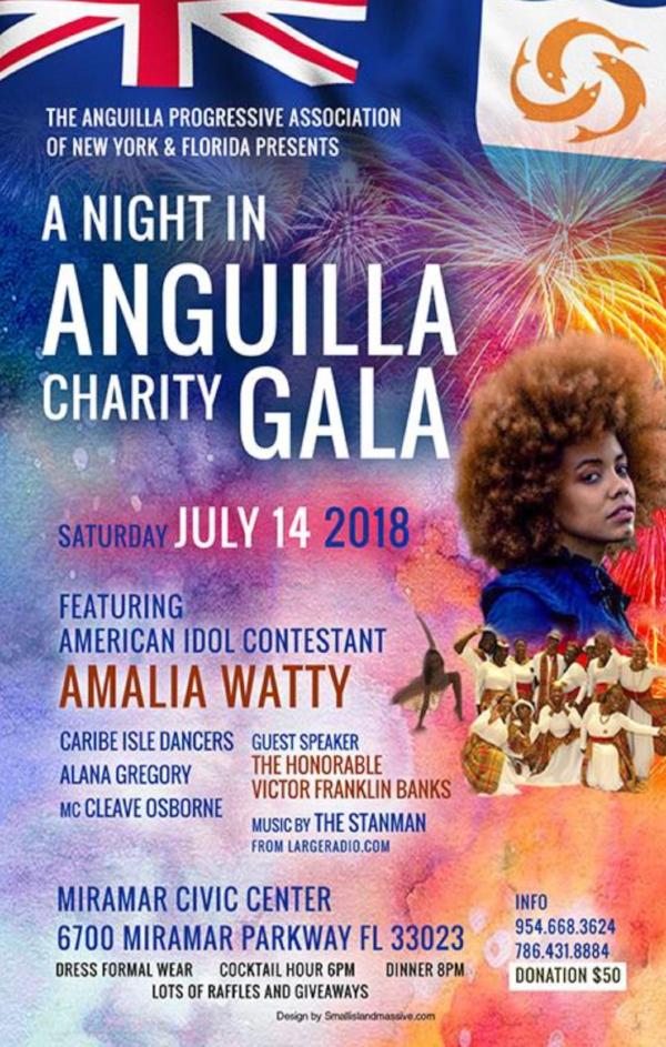 APANY-Florida-gala-event.jpg