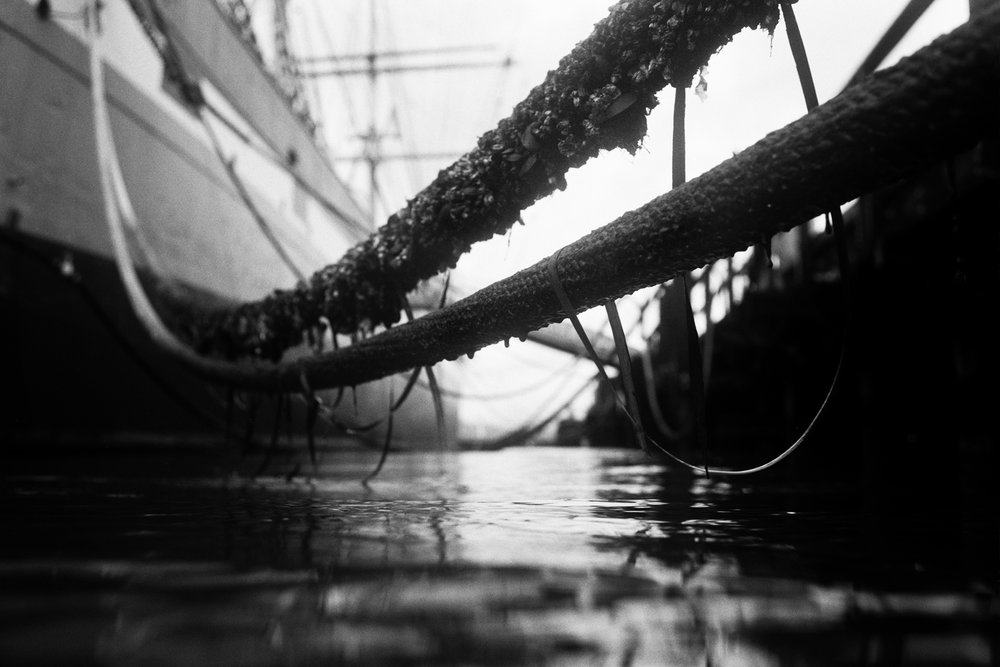 Dock Lines Hyde Street Pier_28_031715.jpg