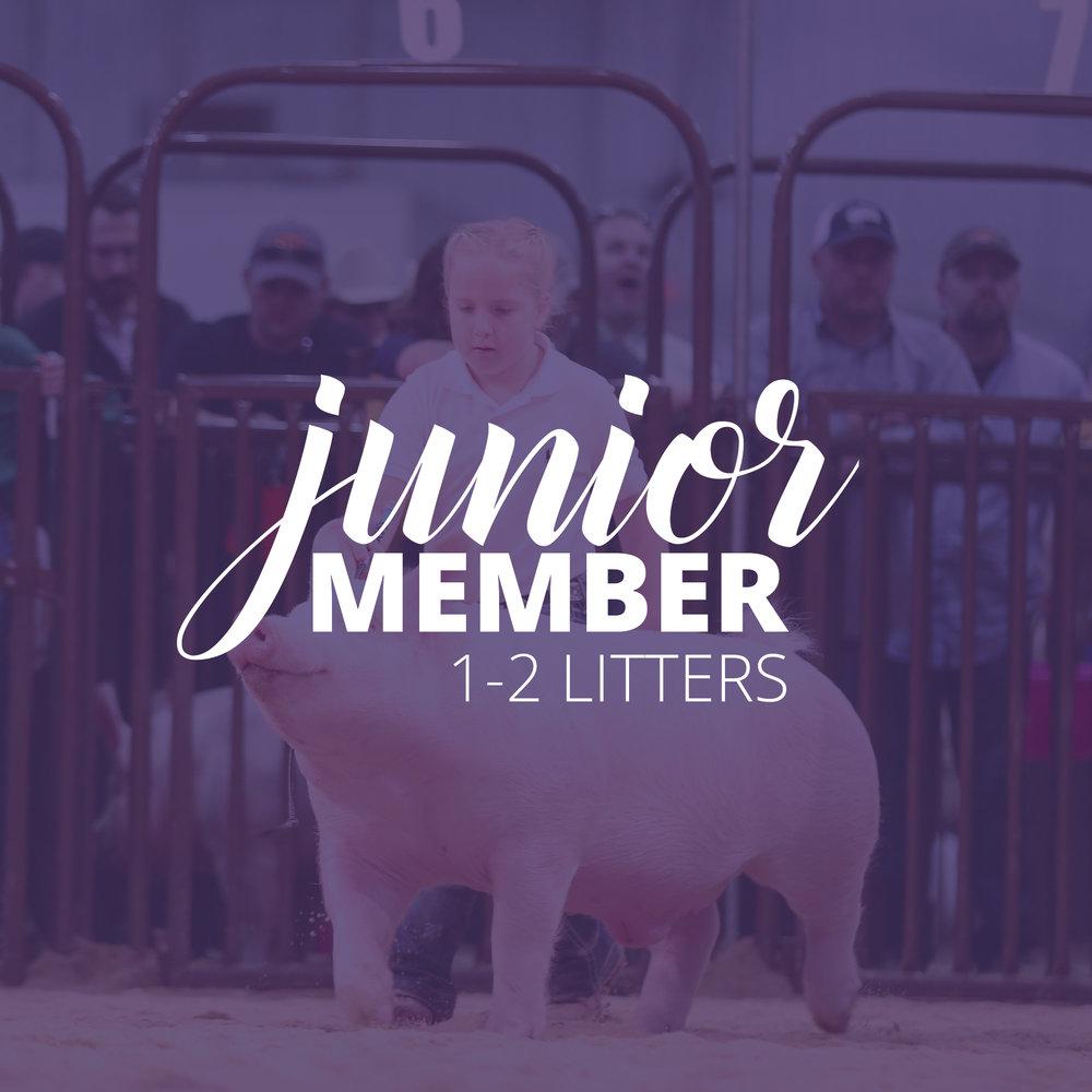 COBA_Membership_junior.jpg