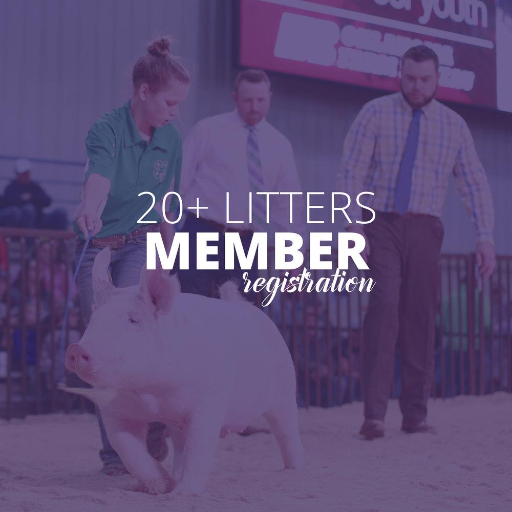 COBA_Membership_20+.jpg
