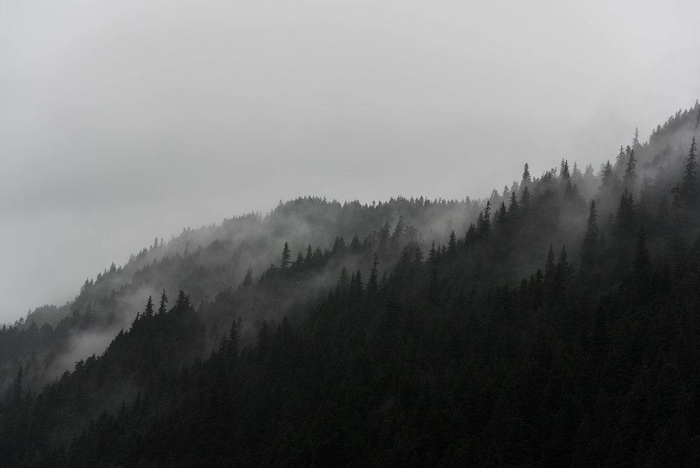 Alaska 2017 (4 of 16).jpg