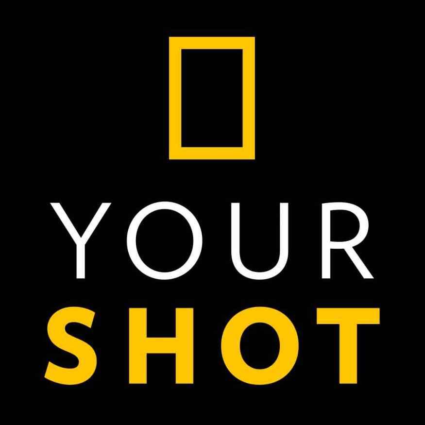 YS_Logo-1.jpg