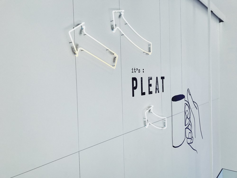 Pleat
