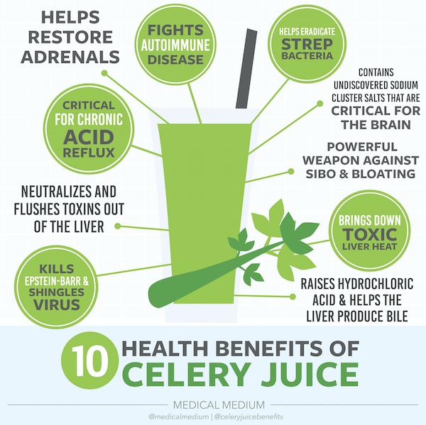 celery-benefits-juice-juicing-kami-blease