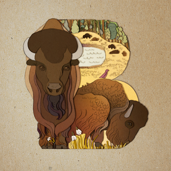 SISSY_Letter_B_bison.jpg