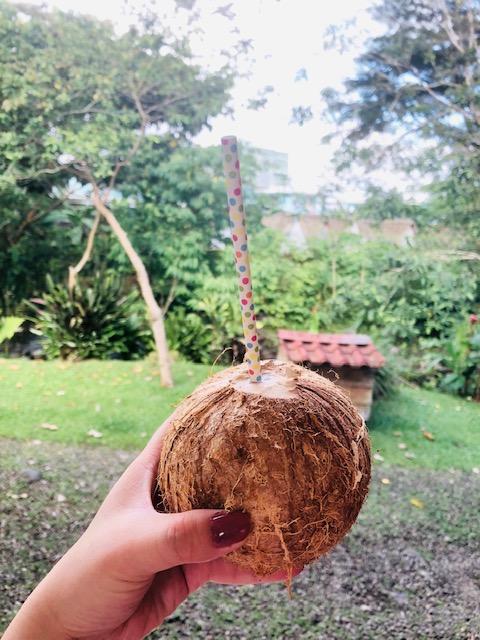 Costa Rica 11.jpg