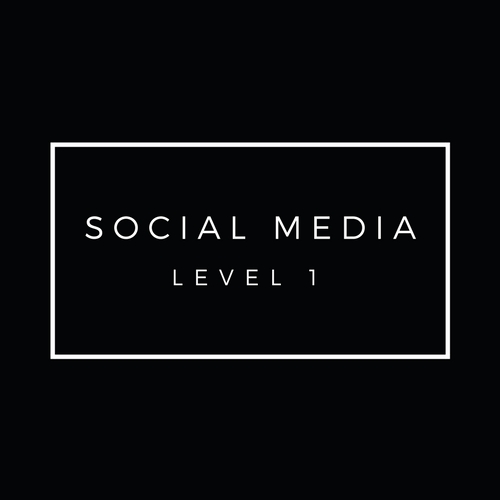 The_Perth_Collective_WORKSHOPS_Social_Media_Level_1.jpg