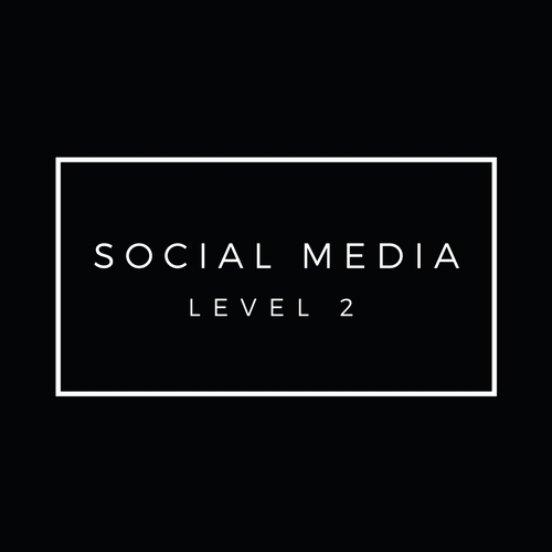 The_Perth_Collective_WORKSHOPS_Social_Media_Level_2.jpg