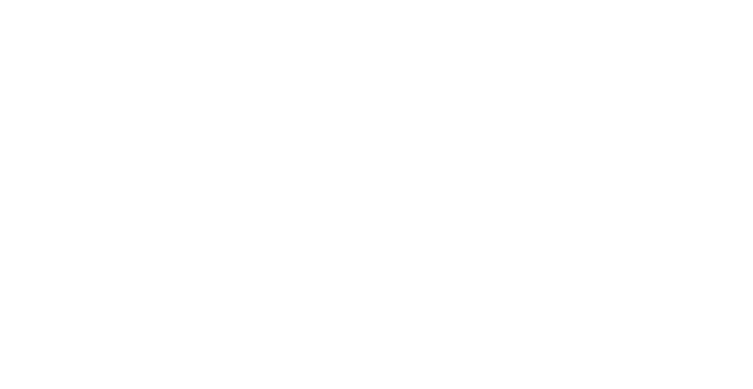 Monica D Photography