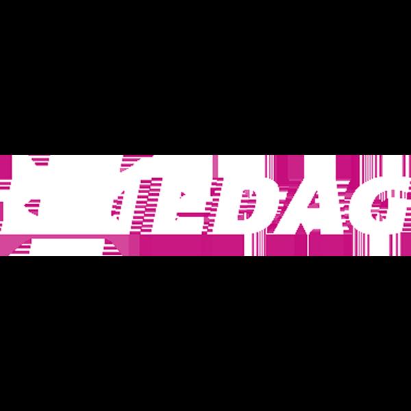 edag (1).png