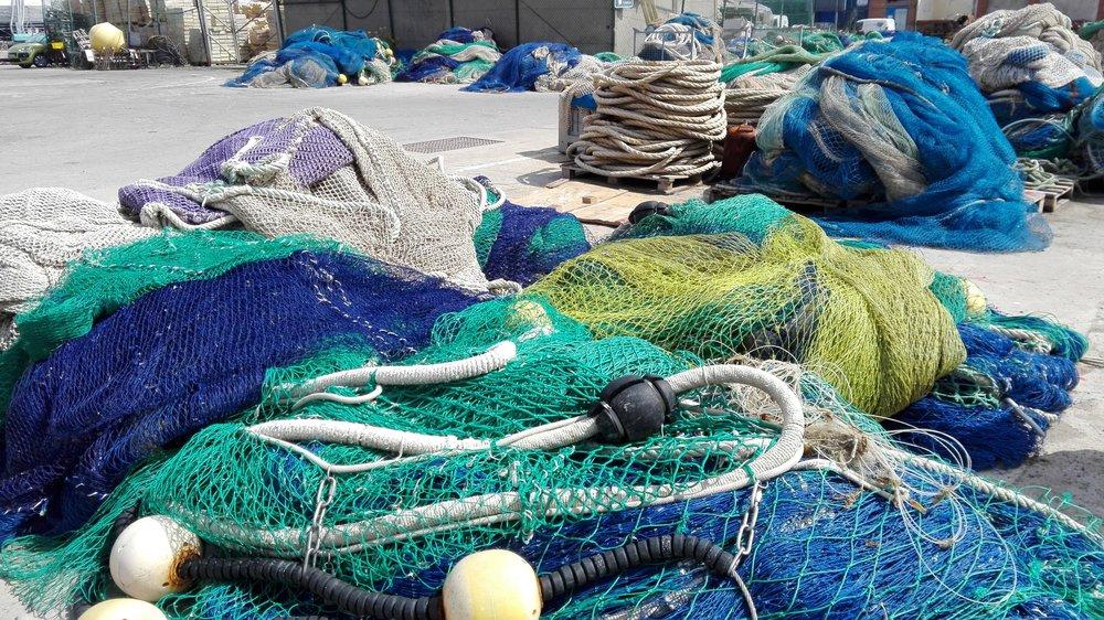 Experiencias con auténticos pescadores en distintos puertos catalanes - Conoce la tradición marinera y pesca tradicional de Catalunya, participa de la subasta de pescado, sal a pescar con pescadores locales y degusta pescado fresco del día!
