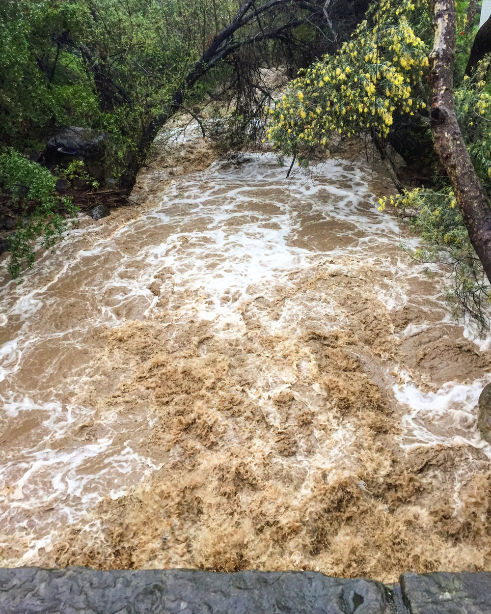 This stream turned into a raging river!
