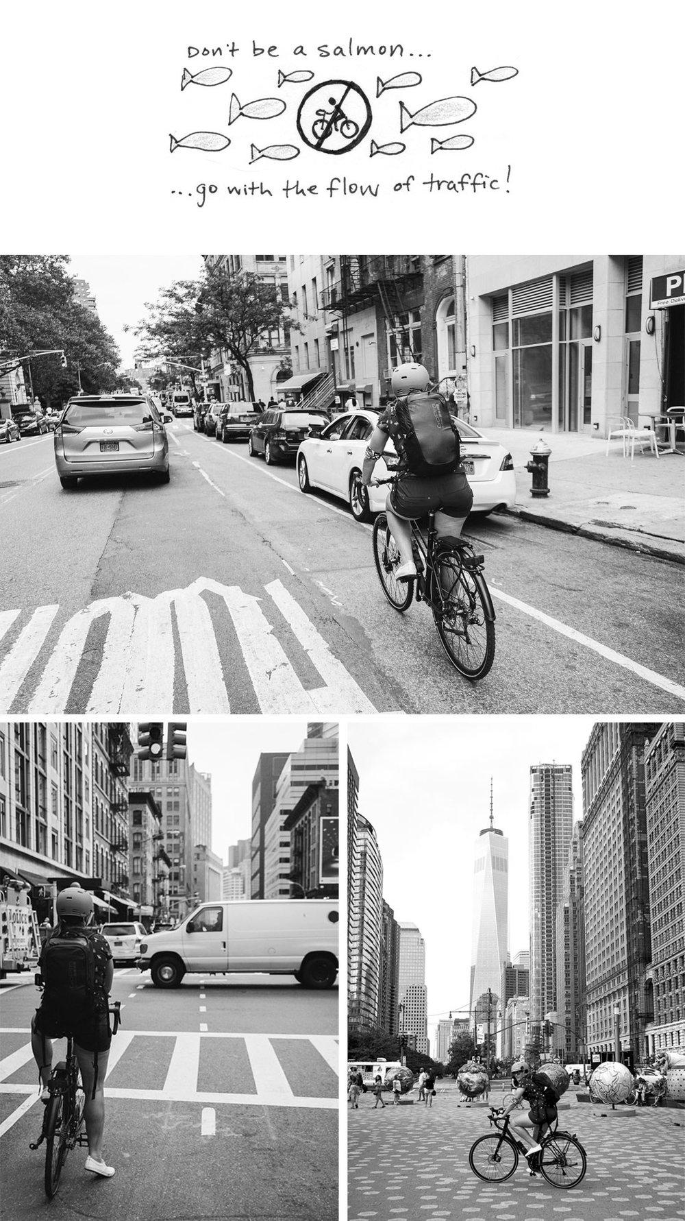 NYCbyBike_salmontip.jpg