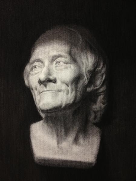 Voltaire Cast Study