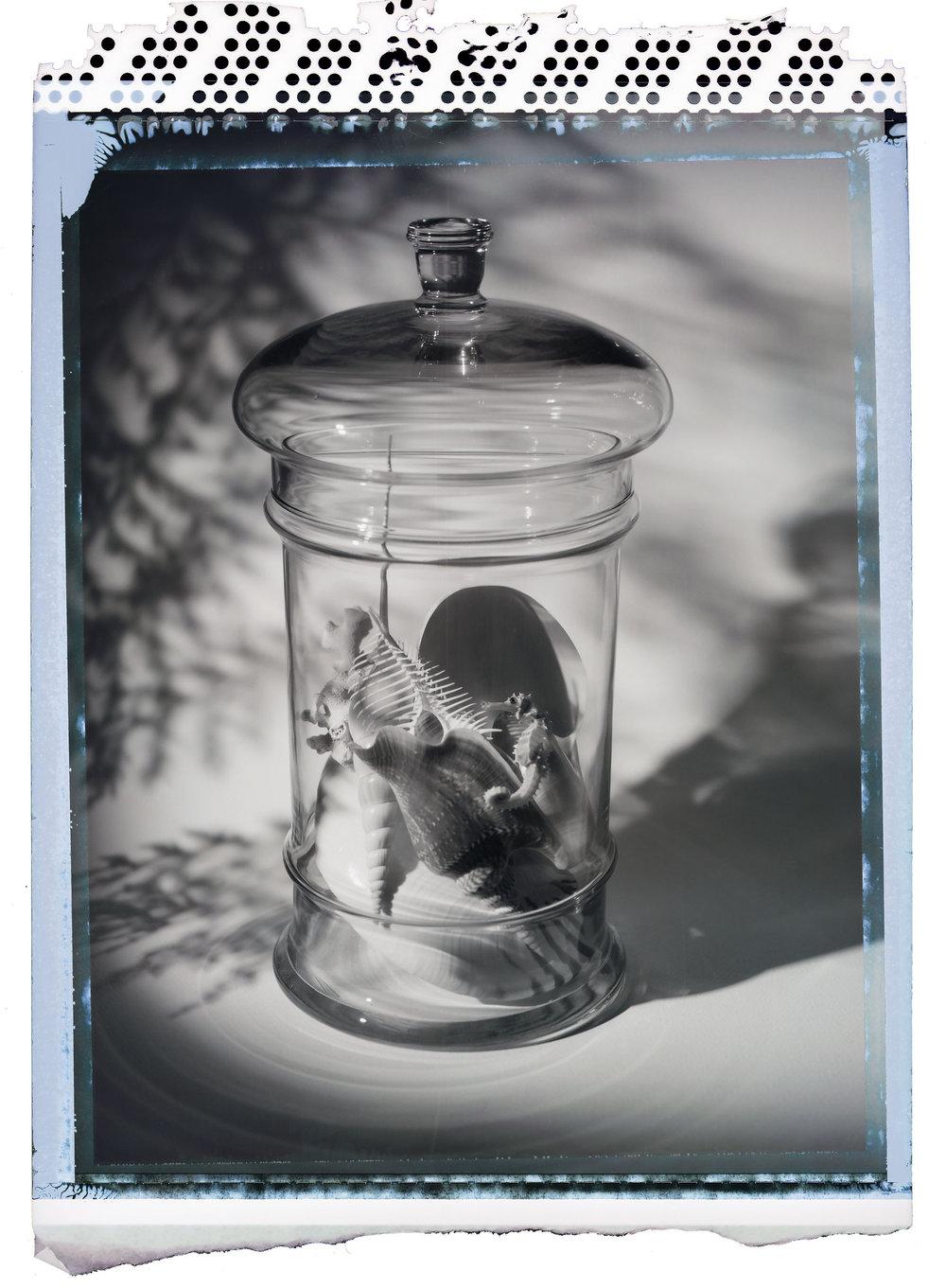 Polaroid_PN55_036.jpg