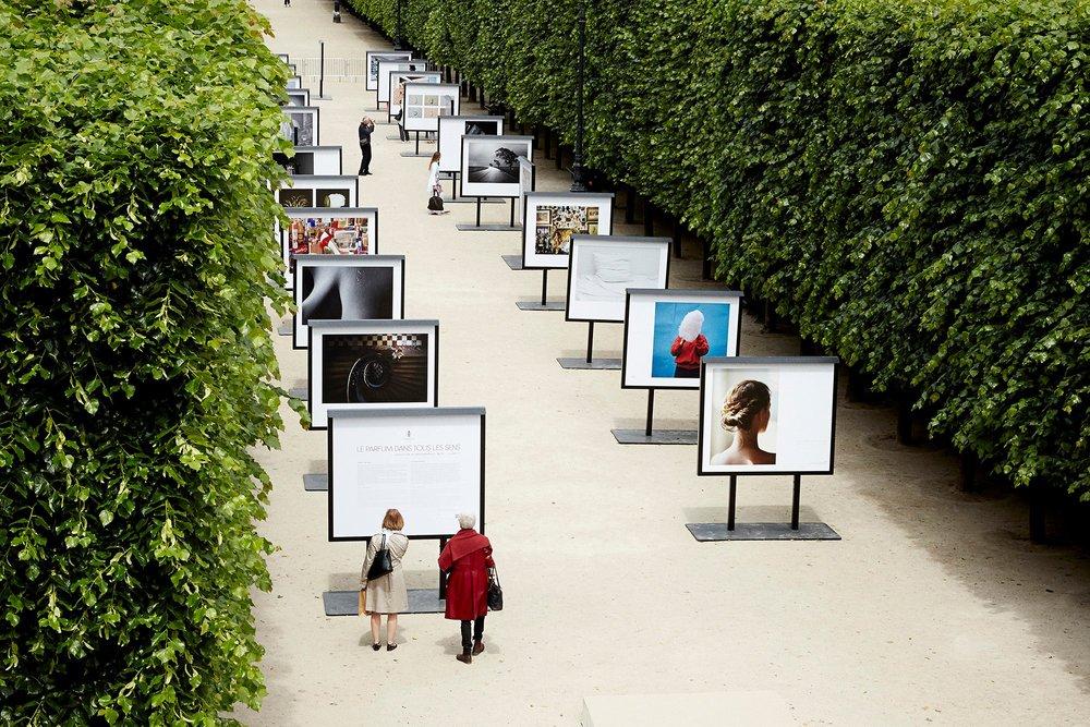 """""""Le parfum dan tours les Sens"""". Jardins du Palais-Royal, París."""