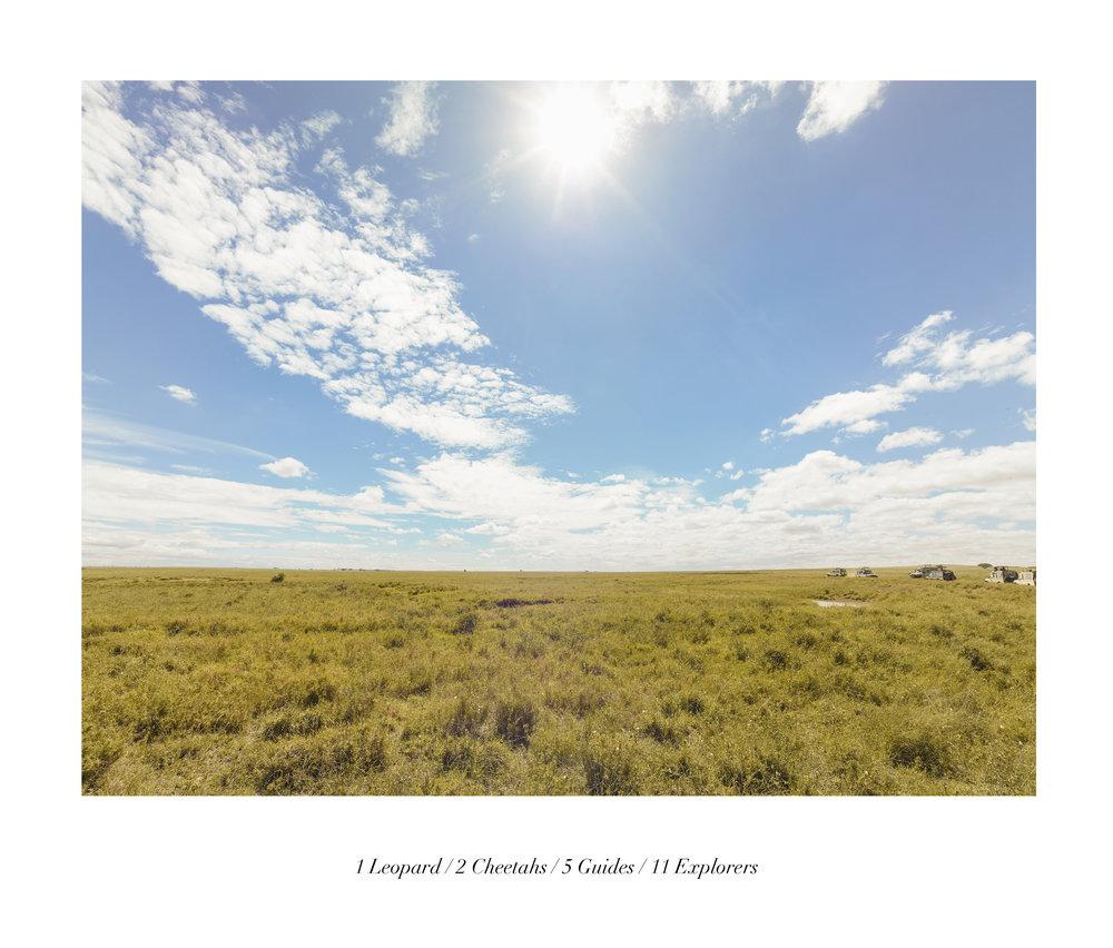 Serengueti (TAN 3.4)t