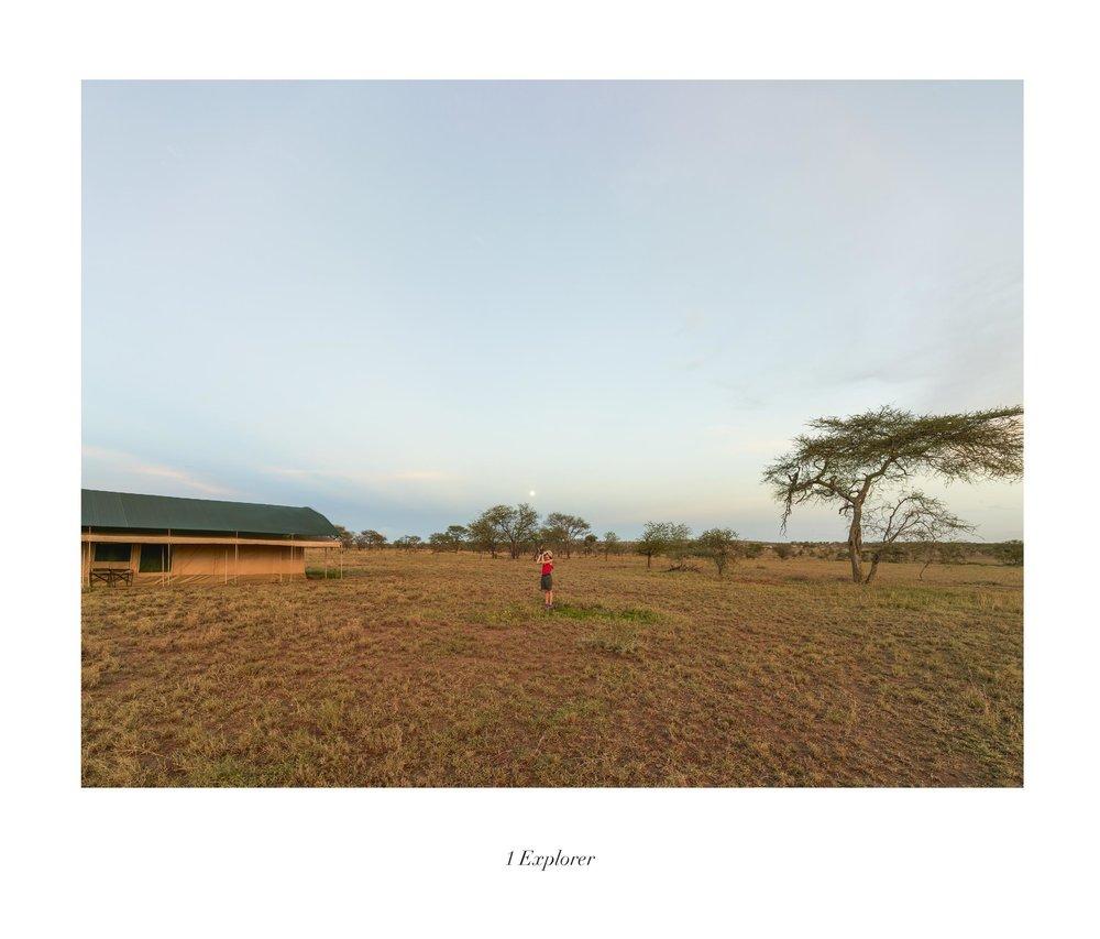 Serengueti (TAN 10.3)t