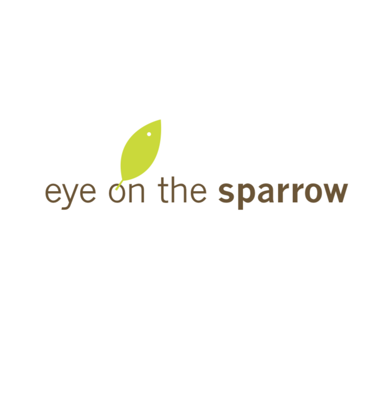 EyeonTheSparrow.png