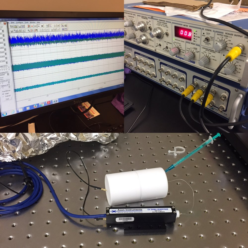 Translocation Instrumentation - Ion conductivity
