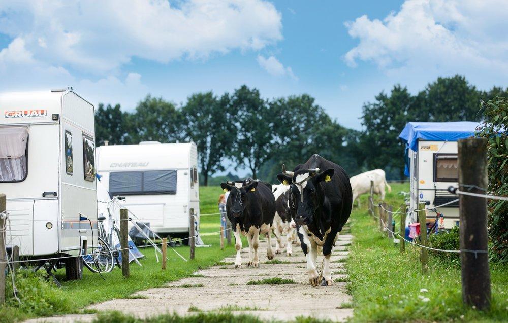 boerderijcamping-de-mebel-guido-pelgrim-fotografie.jpg