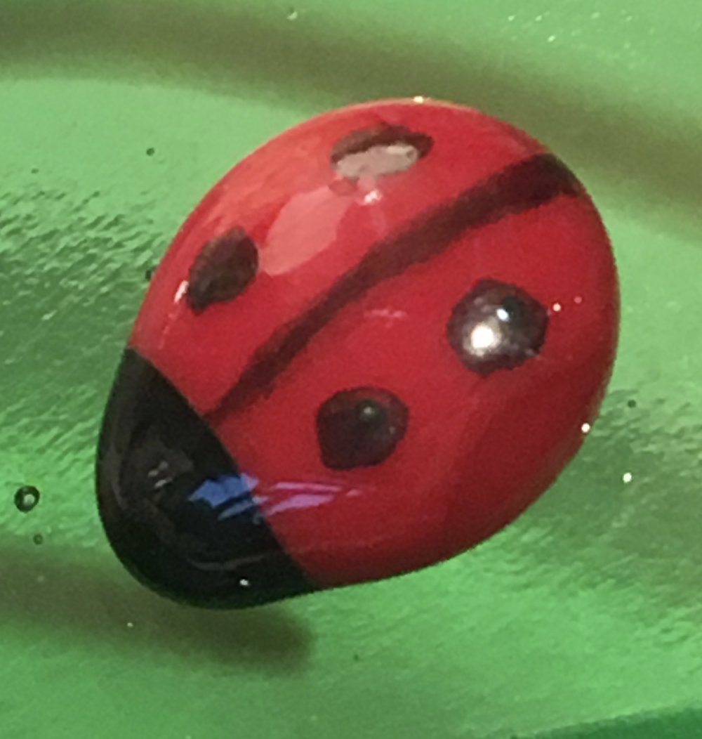 These little glass ladybirds started out as 3mm glass squares of red and black, which were melted into blobs and then put together again to melt into a whole.  Quite fun!