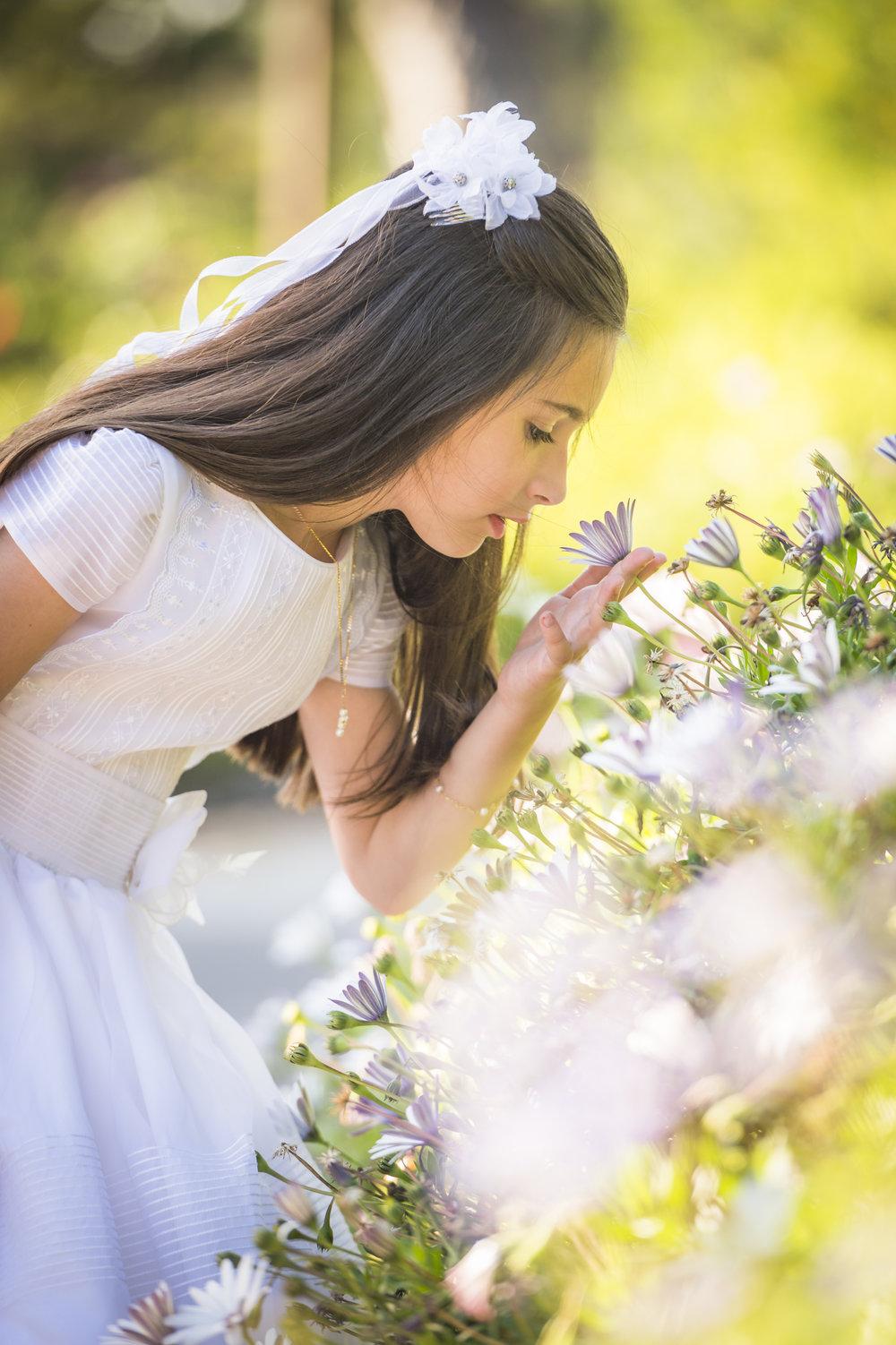 Julia Gardens (2015 of 52).jpg
