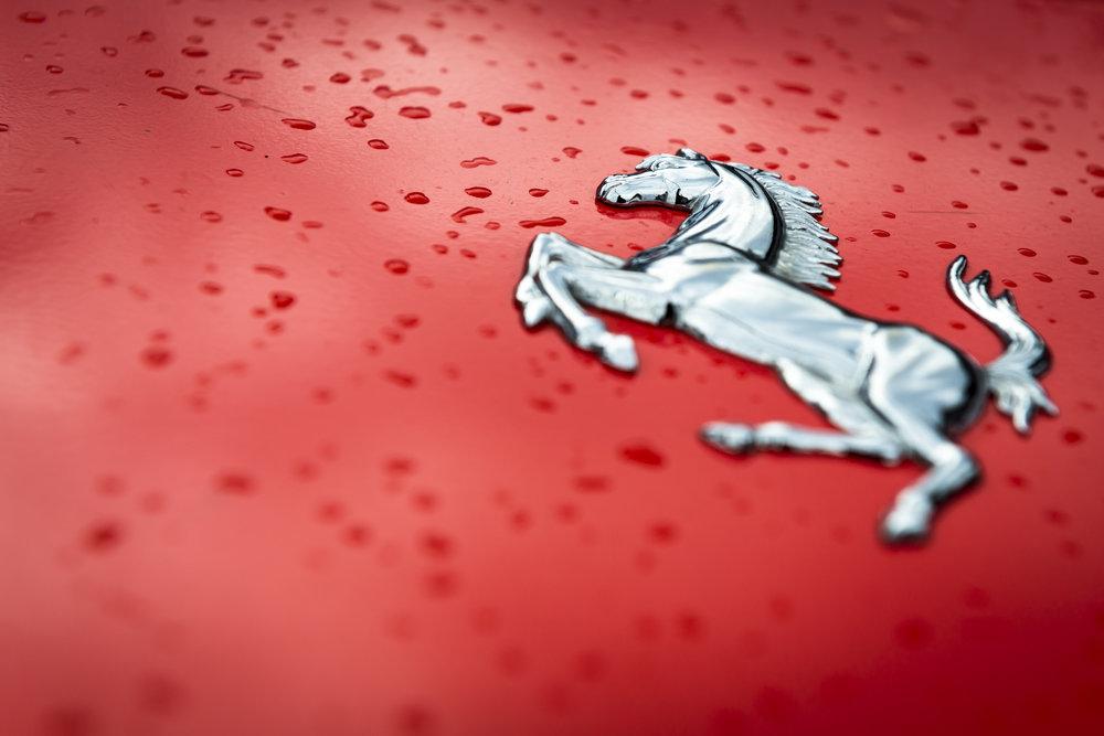 Ferrari Horse (1 of 1).jpg