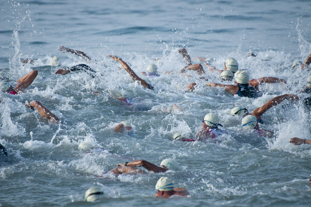 Triathlon Swimmers Blue.jpg