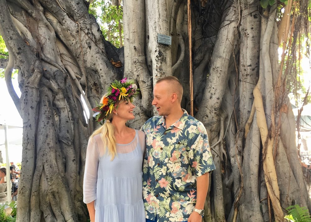 The Moana's iconic Banyan Tree
