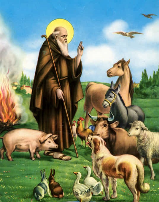 """Feast of St. Anthony the Abbot - """"Anthony was born around 251, to wealthy parents who owned land in the present-day Faiyum region near Cairo. During this time, the Catholic Church was rapidly spreading its influence throughout the vast expanses of the Roman empire, while the empire remained officially pagan and did not legally recognize the new religion.In the course of his remarkable and extraordinarily long life, Anthony would live to see the Emperor Constantine's establishment of Christianity as the official religion of the Roman empire. Anthony himself, however, would establish something more lasting – by becoming the spiritual father of the monastic communities that have existed throughout the subsequent history of the Church…."""" (CNA) Read more."""