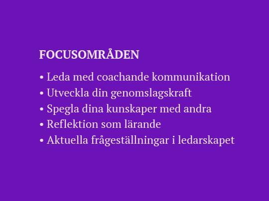 Fokus_NY.png