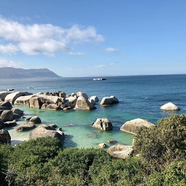 New Content!!!! 🚨 Check out Brandi's amazing experience in South Africa! Find some of her favorite eats, must visit locations and more!  #travelblogger #travel #3kidsfromdurham #southafrica