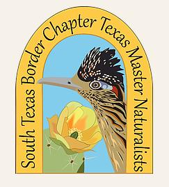 STB TMN Logo.png