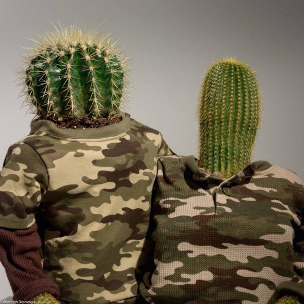 2016-desrosiers-cactuscouple1.jpg