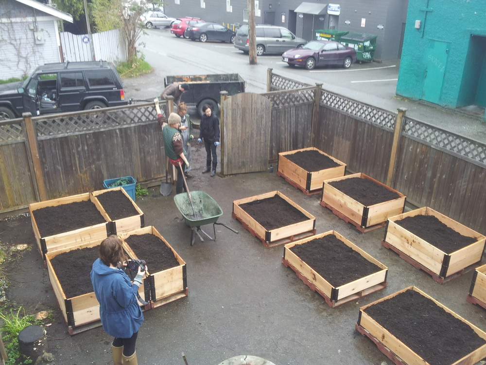 Community_Garden_Builders - Acorn Vancouver_after.jpg