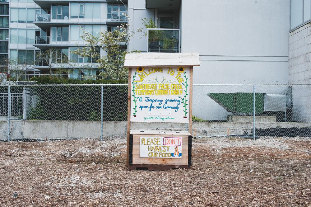 Shifting_Growth_Raised_Garden Beds_Community_Garden_Vancouver - South_False_Creek_Garden - 14.jpg