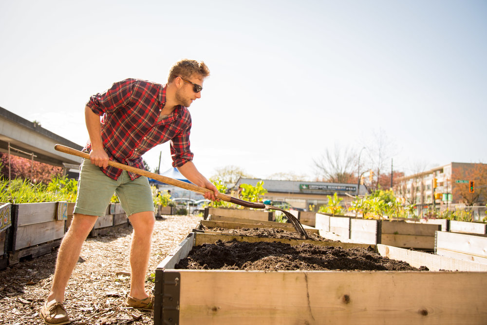 Raised_Garden_Bed_The_Drive_Temporary_Community_Garden_04.2016_Shifting_Growth_126.jpg