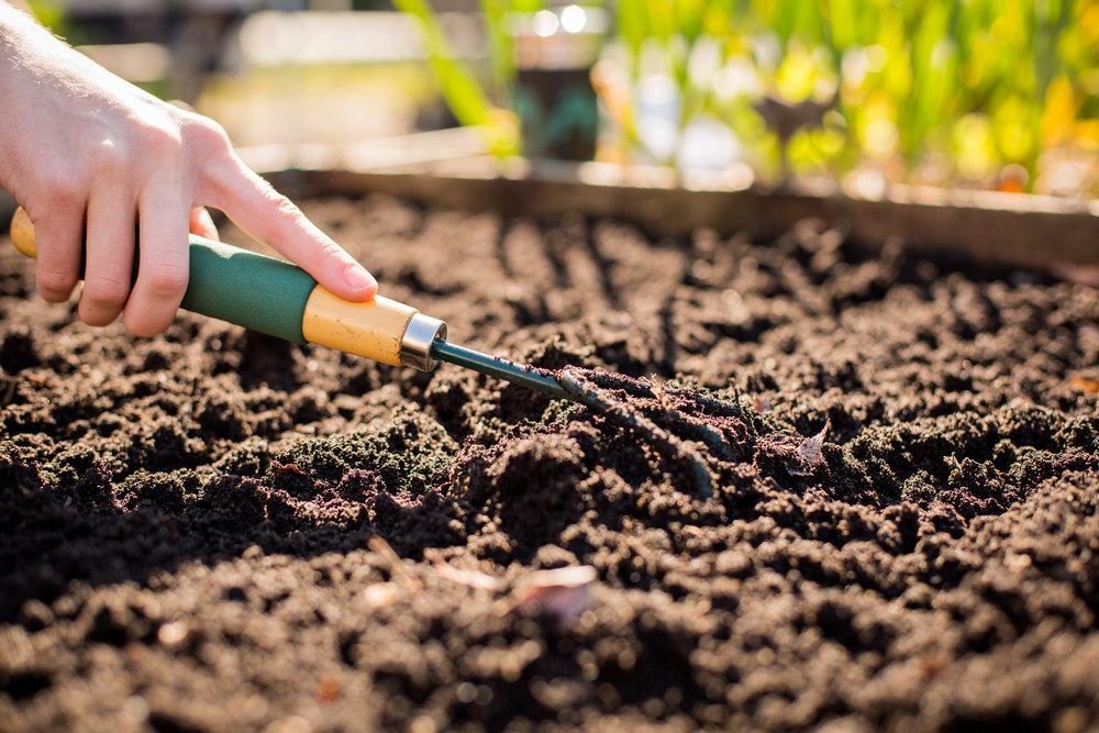 Raised_Garden_Bed_Hastings_North_Temporary_Community_Garden_04.2016_Shifting_Growth_38.jpg