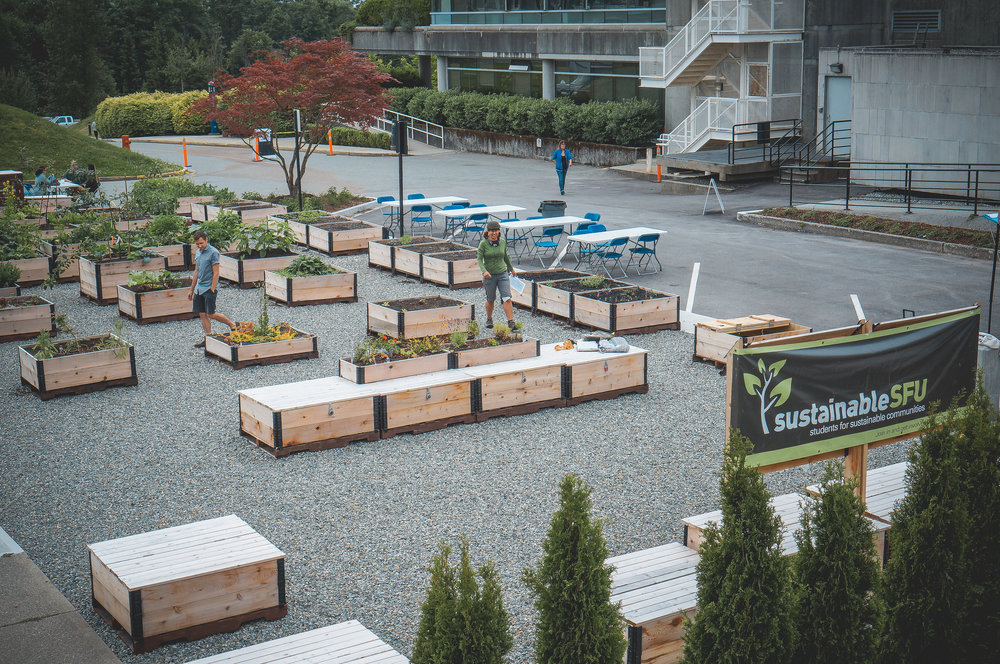 SFU_Learning_community_garden_raised_bed