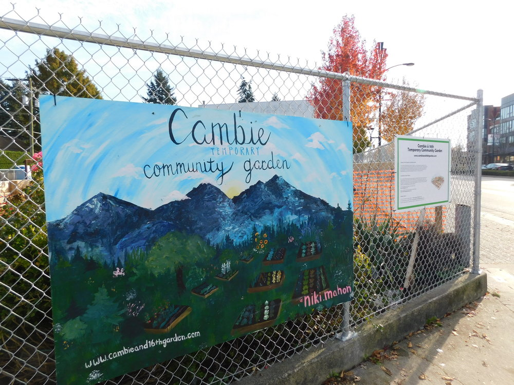 Cambie_16th_Vancouver_Community_Garden_Builders-0020.JPG