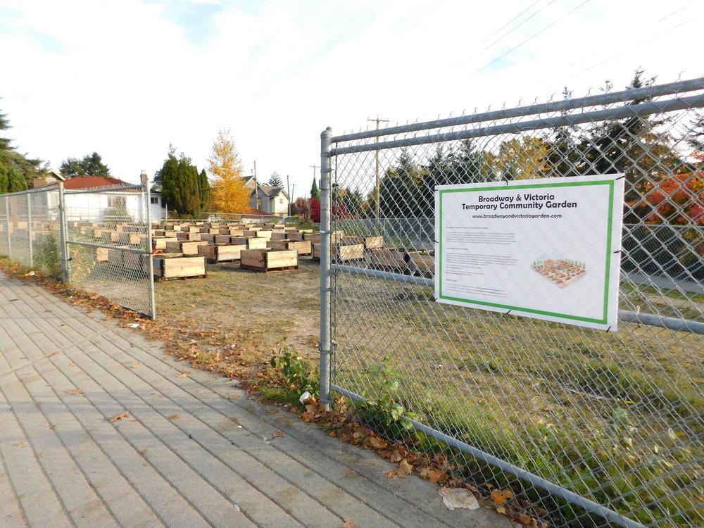 Victoria_Broadway_Vancouver_Community_Garden_Builders-0014.JPG