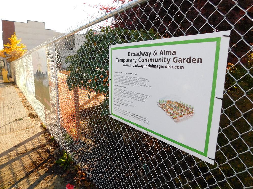 Broadway_Alma_Vancouver_Community_Garden_Builders-0015.JPG