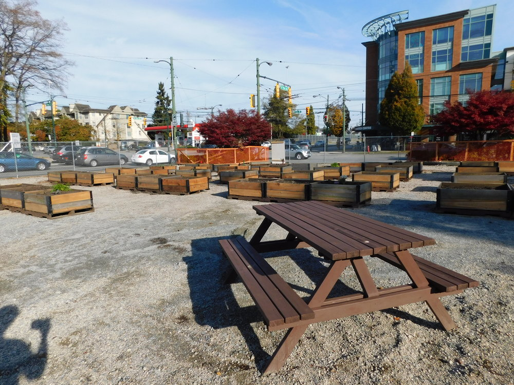 oak_41st_Vancouver_Community_Garden_Builders-0018.JPG